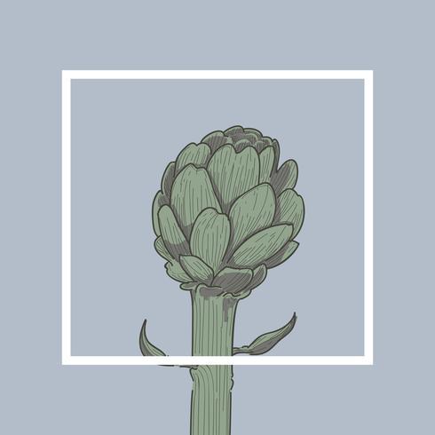 Ilustración de las plantas de la casa