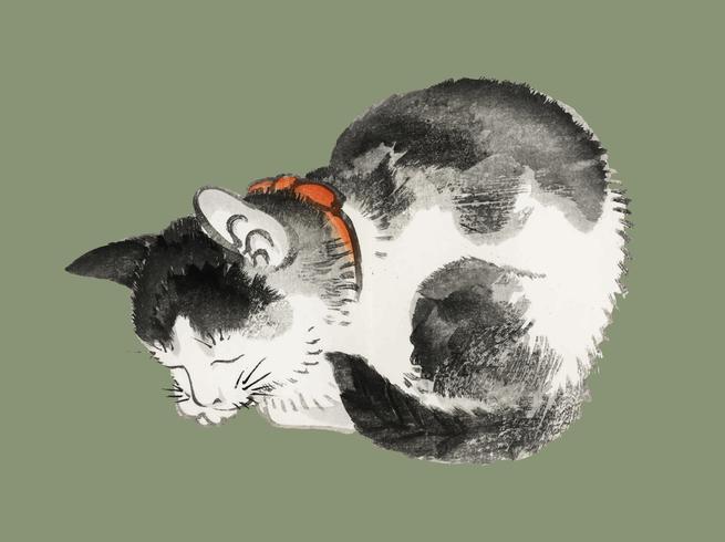 Gato dormido por K? No Bairei (1844-1895). Mejorado digitalmente desde nuestra propia edición original de Bairei Gakan en 1913.