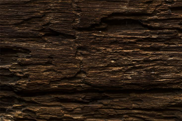 Close up of a wooden plank