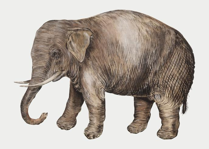 Elefante en estilo vintage