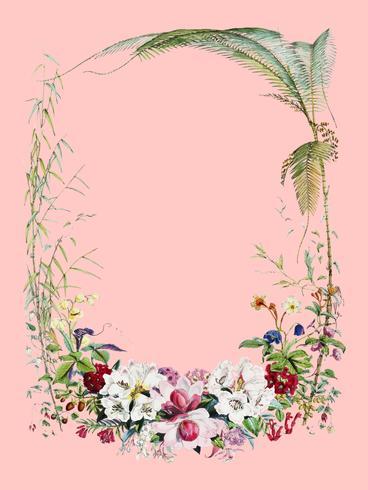 Página de rosto de Ilustrações de plantas do Himalaia (1855) por WH (Walter Hood) Fitch (1817-1892). Digitalmente aprimorada pelo rawpixel.
