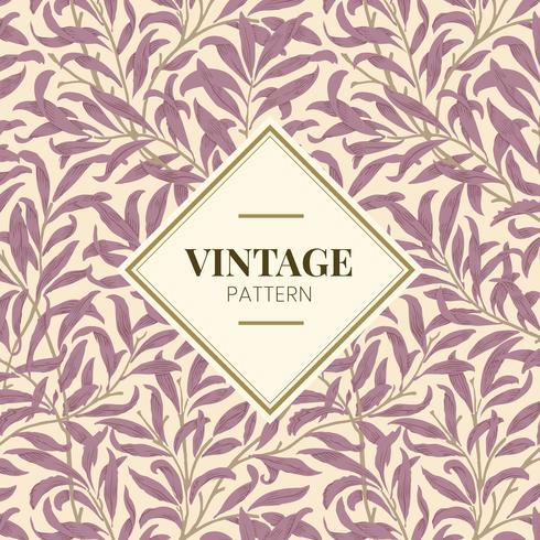 Ilustração Vintage de ramo de salgueiro