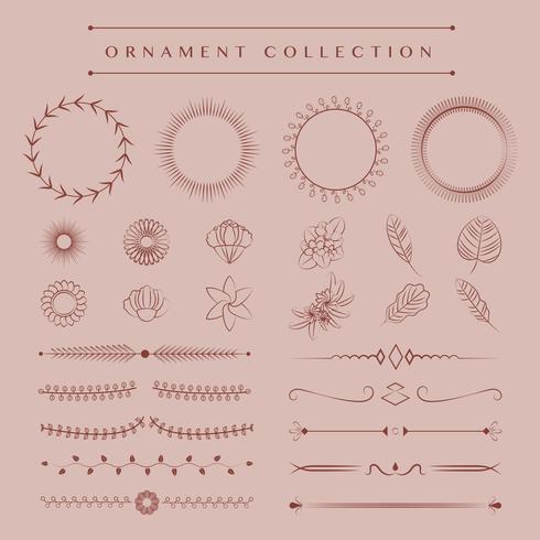 Ornaments collection vector design concept