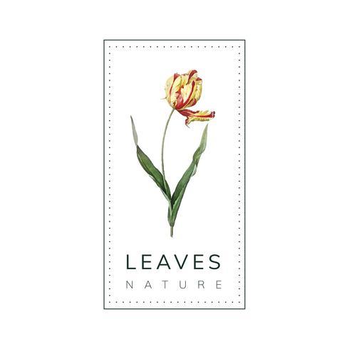Vector de diseño de logotipo de naturaleza de hojas