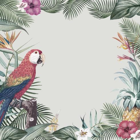 Cadre perroquet tropical