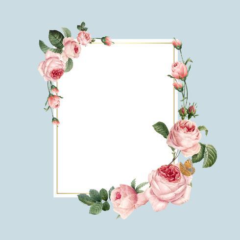 Marco de rosas rosadas de rectángulo en blanco en vector de fondo azul
