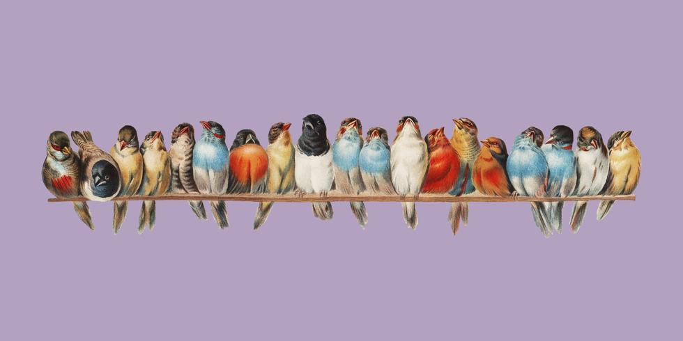 A Perch of Birds (1880) di Hector Giacomelli (1822-1904). Miglioramento digitale di rawpixel.