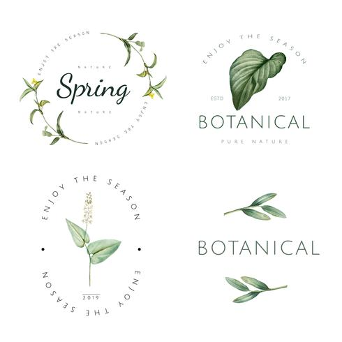 Plant logo design