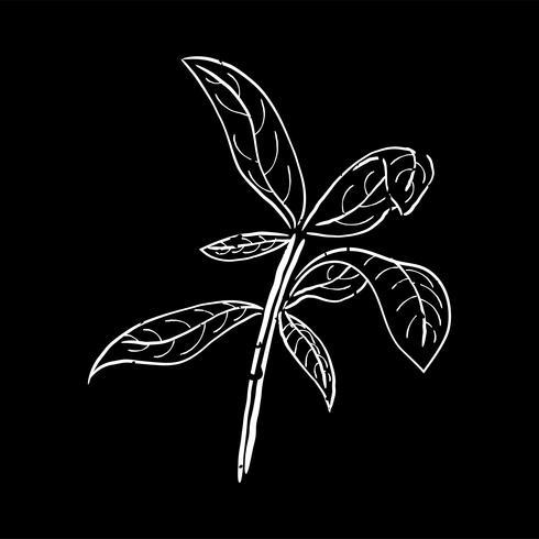 Ilustração, de, planta