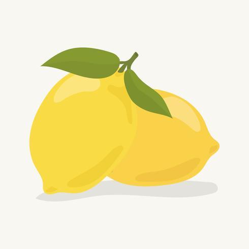 Hand getekend kleurrijke citroen illustratie