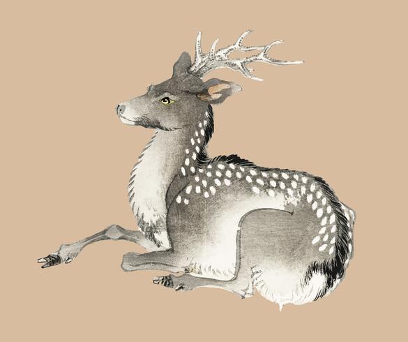 Elk de K? No Bairei (1844-1895). Amélioré numériquement de notre propre édition originale de 1913 de Bairei Gakan.