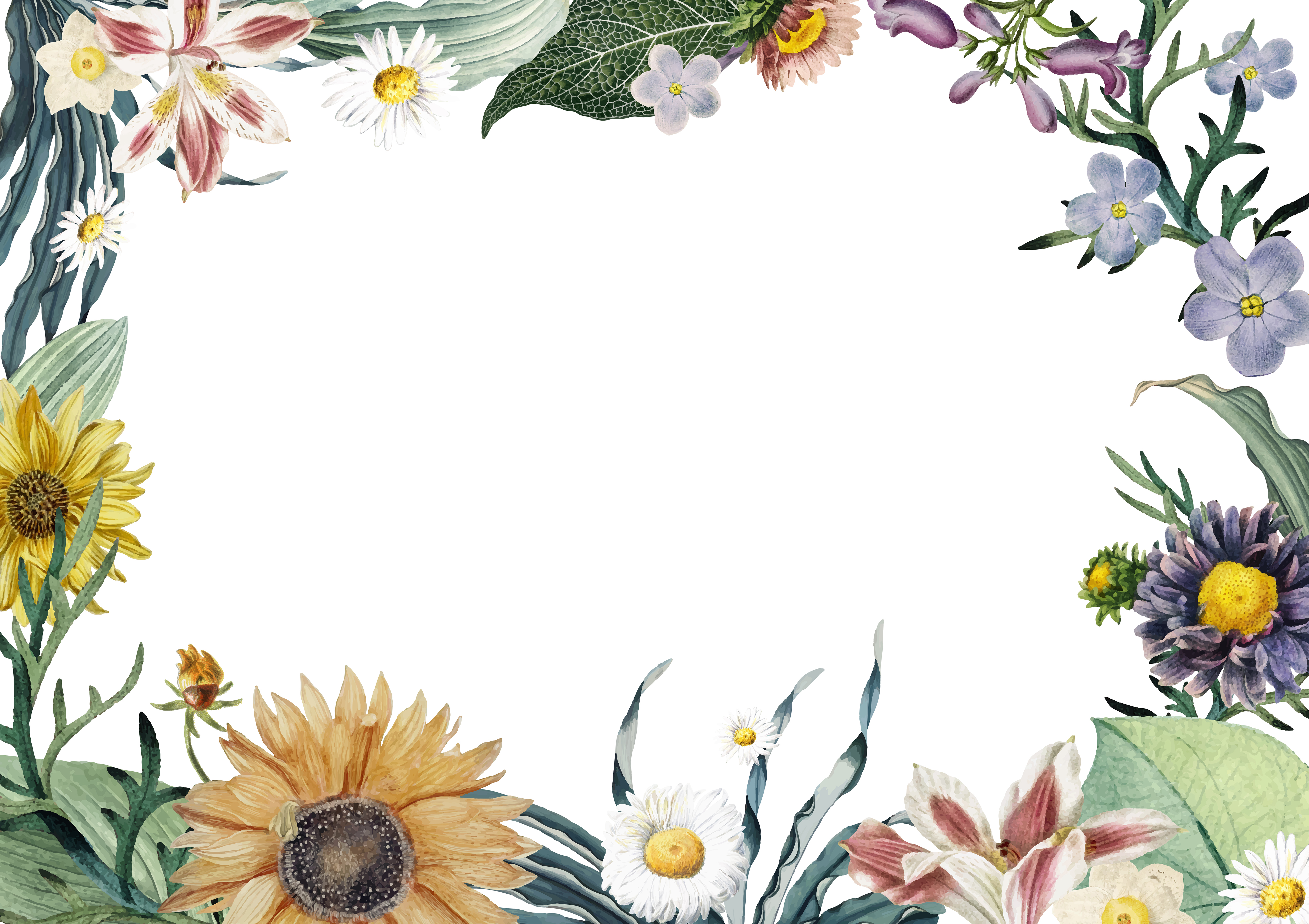 Floral Frame Background Download Free Vectors Clipart Graphics