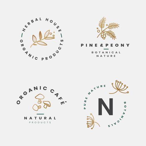 Coleccion floral botanica