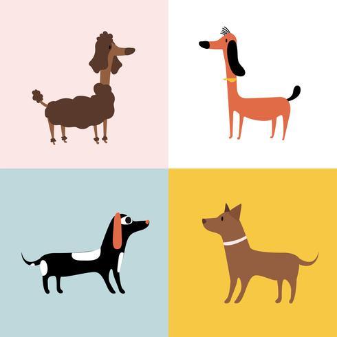 Collage di diverse razze di cani