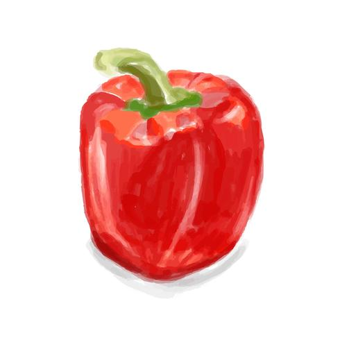 Hand drawn pepper watercolor style