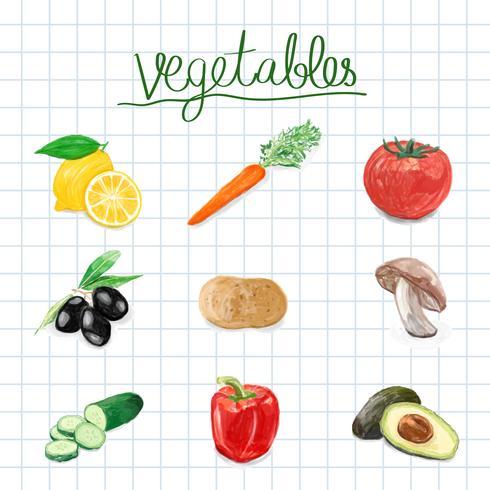 Estilo de aquarela de legumes mão desenhada