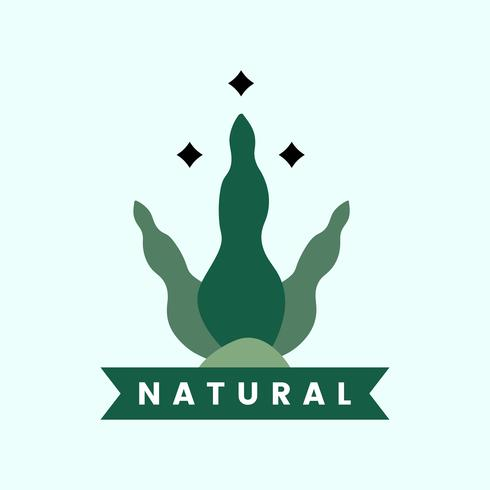 Natural and organic product icon