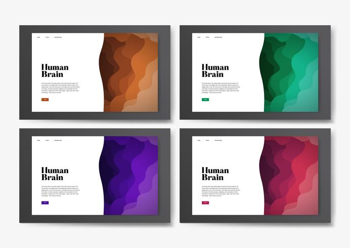 Gráfico informativo del sitio web del cerebro humano