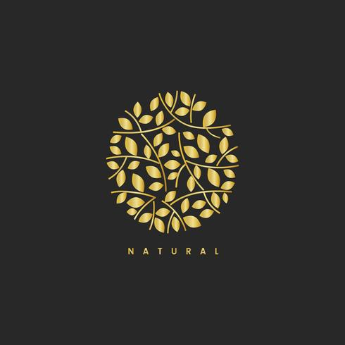Illustrazione di marchio di branding foglia naturale