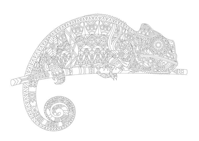 Coloring page of a chameleon
