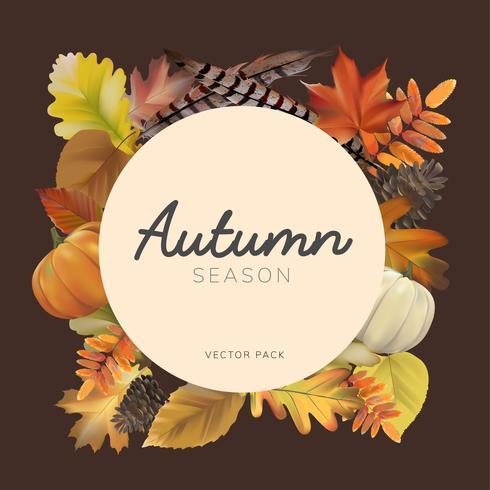 Colección de vector de hojas de otoño
