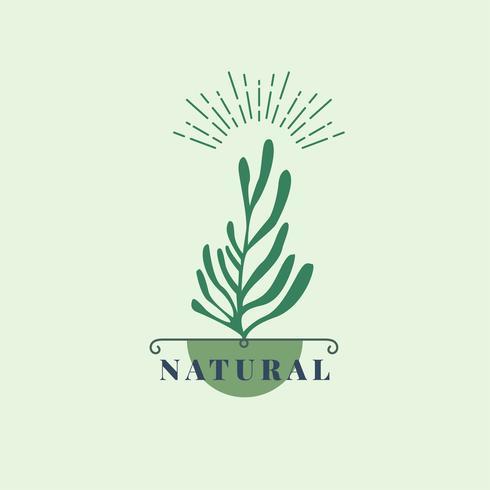 Ícono de productos naturales y orgánicos.