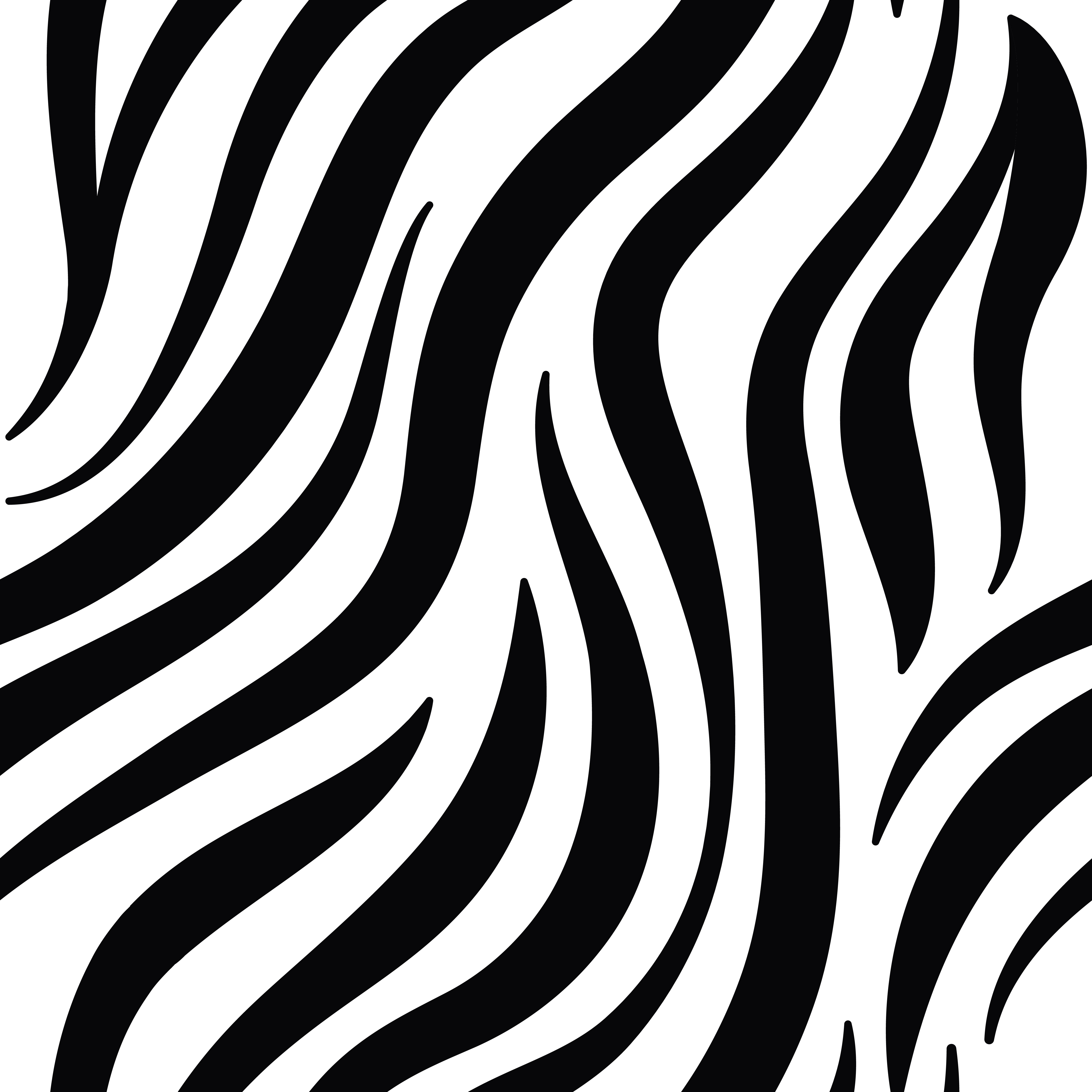 Aninimal Book: Black and white zebra print pattern vector - Download Free ...