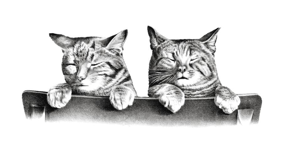 Gatti di Thomas Hunter. Originale della Library of Congress. Miglioramento digitale di rawpixel.