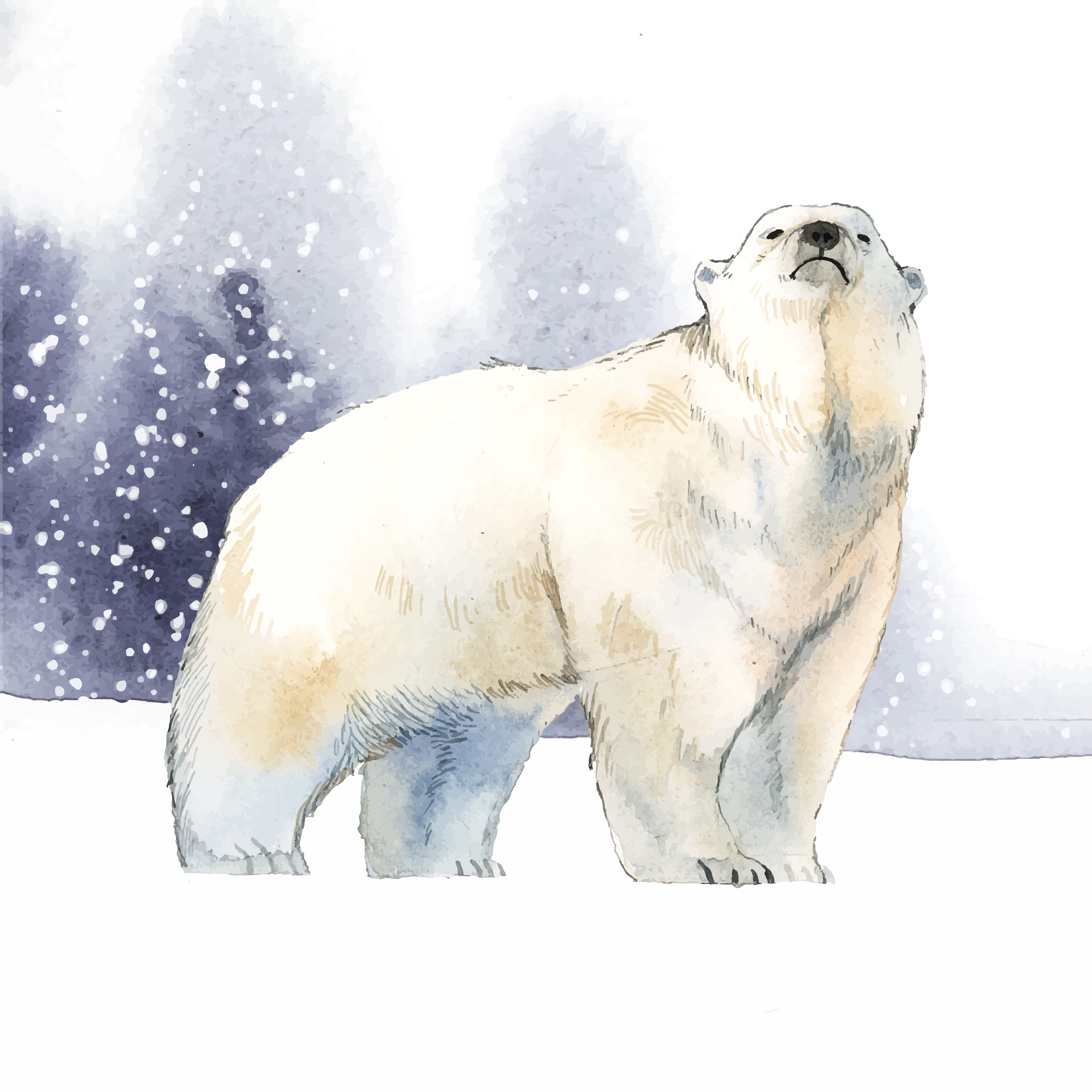 Hand Drawn Polar Bear In The Snow Watercolor Style Vector