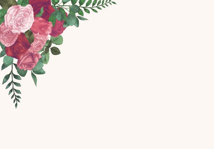 Illustrazione di rose isolato su sfondo bianco