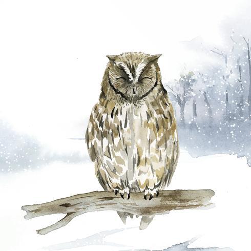 Chouette en vecteur de style aquarelle hiver