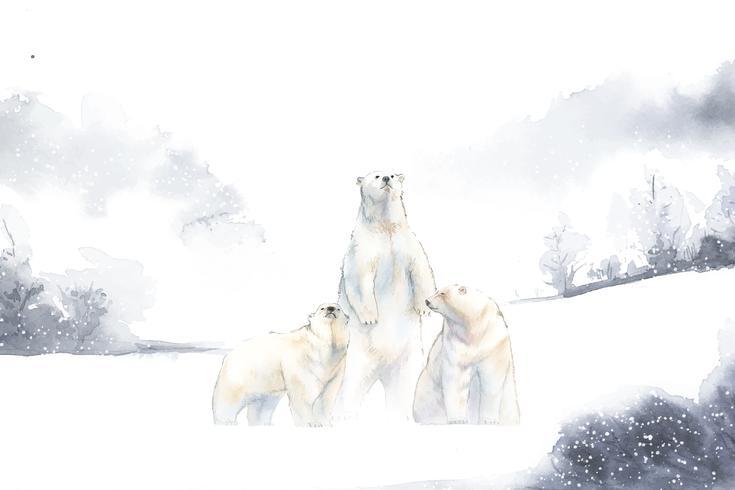 Orsi polari nel vettore dell'acquerello della neve