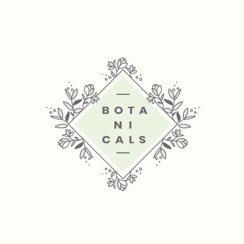 Vecteur de conception badge style botanique
