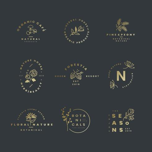Sats av botaniska logotypsvektorer