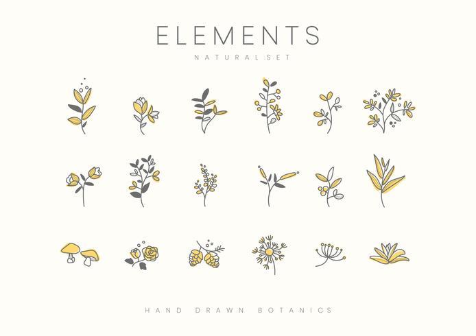 Plants design set