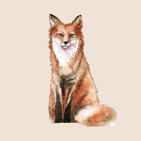 Een rode vos geschilderd door aquarel