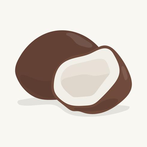 Dibujado a mano colorida ilustración de coco