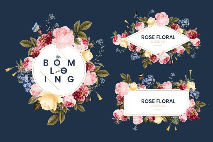 Conjunto de ilustración de tarjeta floral