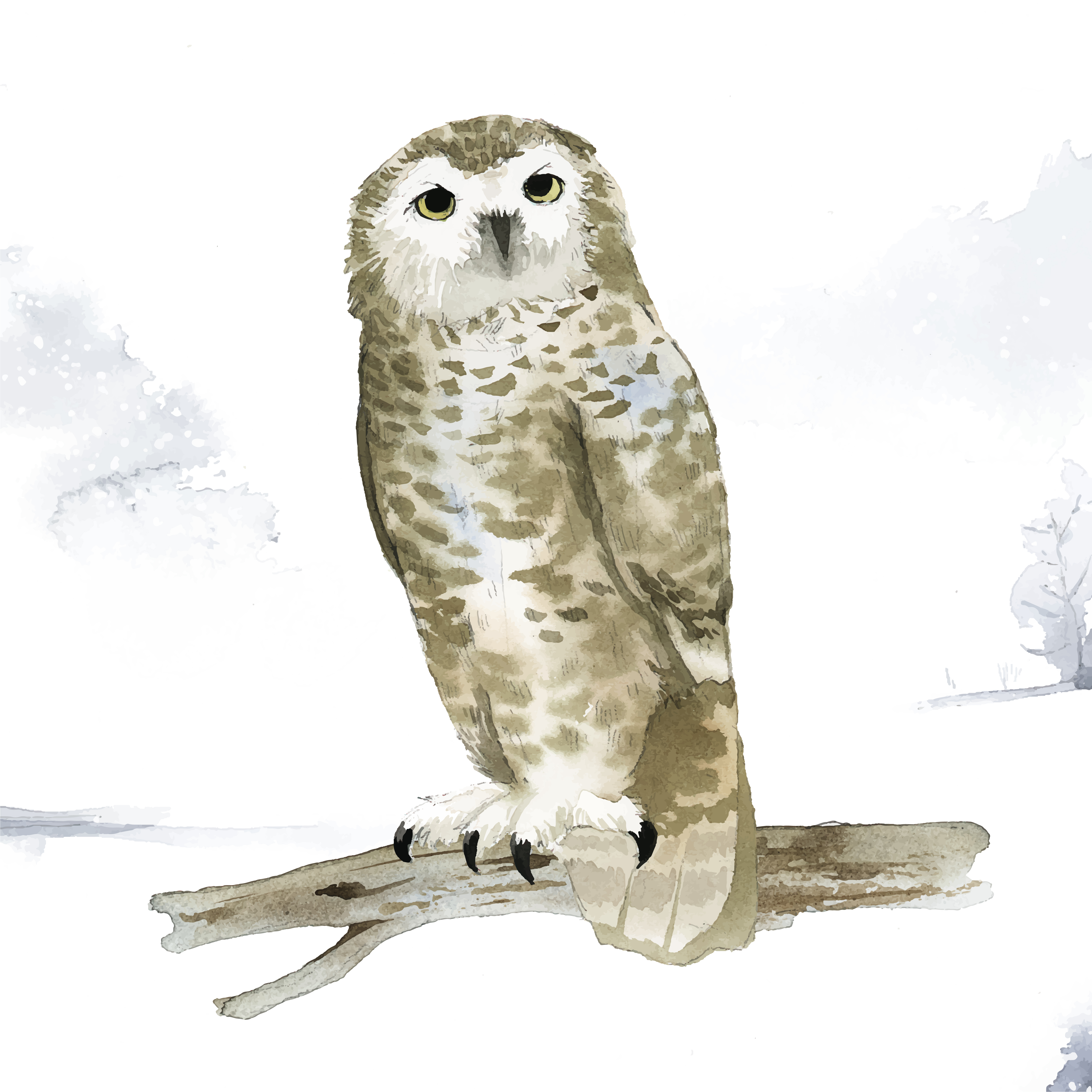 Snowy owl in winter watercolor style vector - Download ...