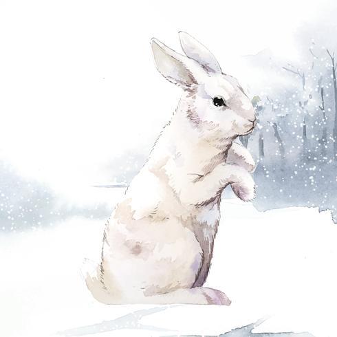 Wildes weißes Kaninchen in einem Wintermärchen gemalt durch Aquarellvektor