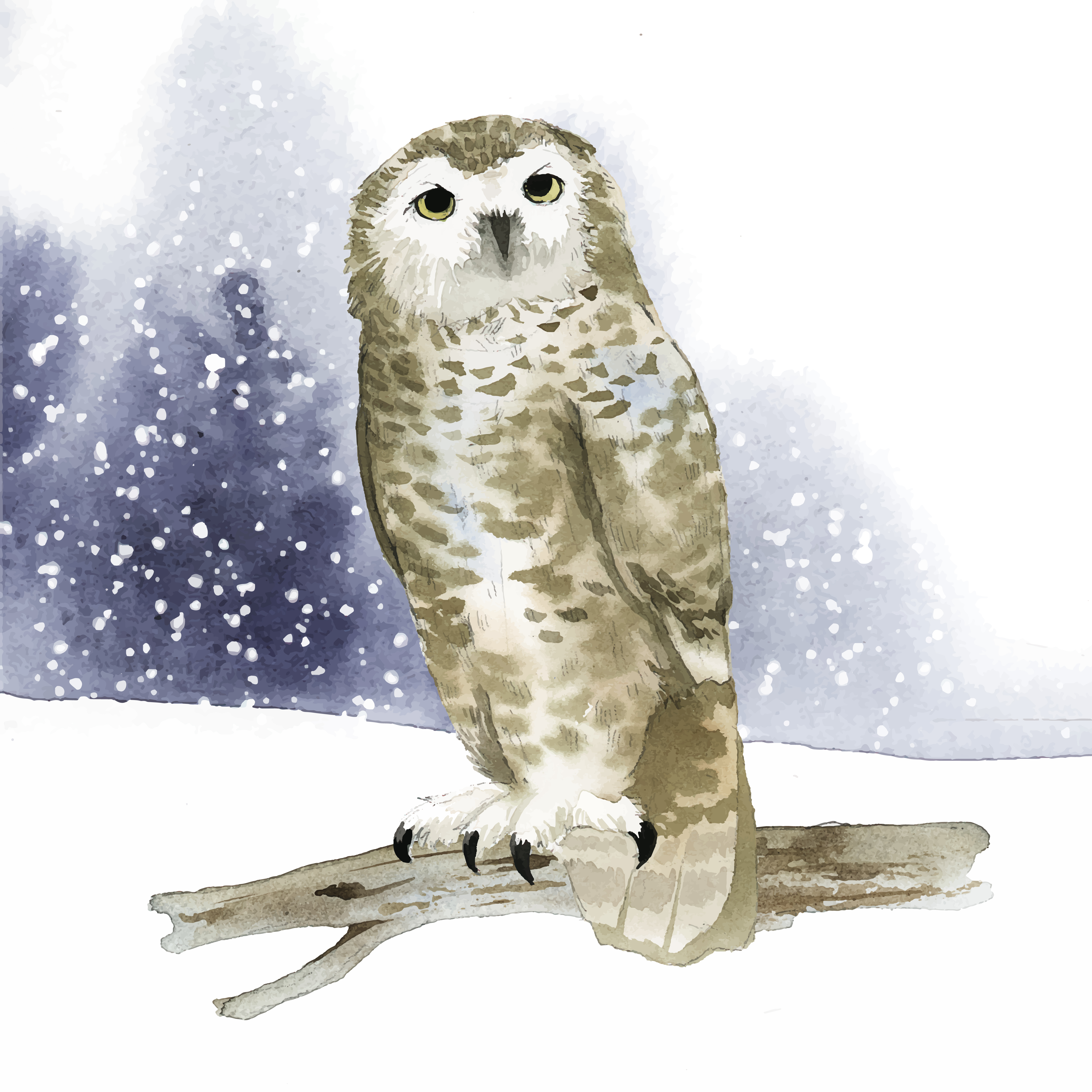 Snowy Owl In Winter Watercolor Style Vector Download