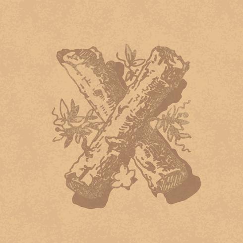 Style de typographie vintage majuscule X