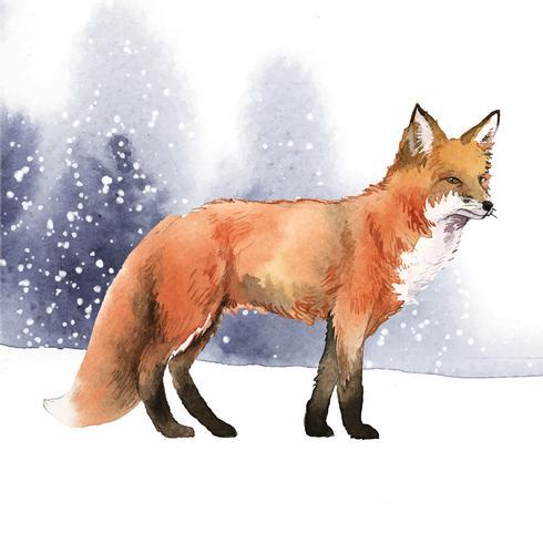 Renard dessiné à la main dans le style aquarelle de la neige