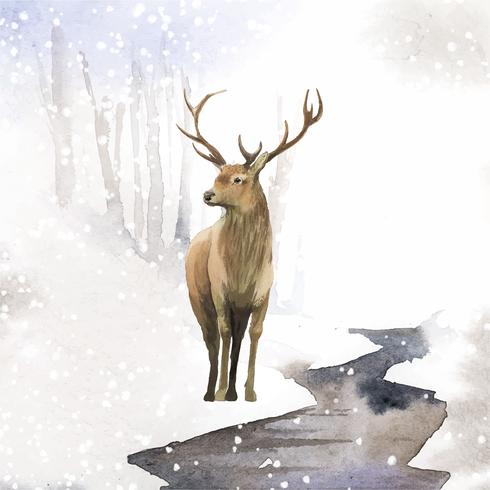 Male deer painted by watercolor vector