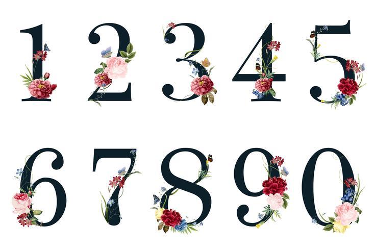 Numbers Kostenlos