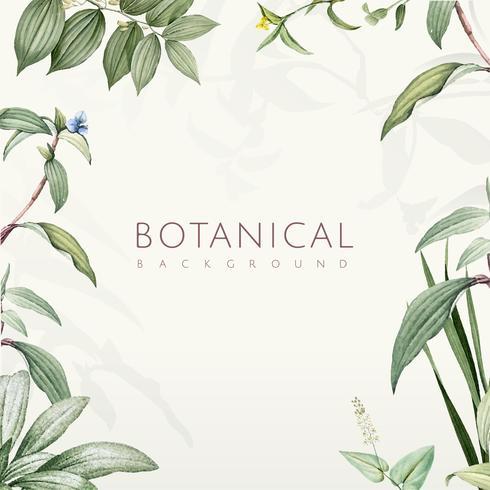 Gröna botaniska blad bakgrundsdesign
