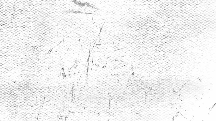 Grunge branco angustiado textura vector