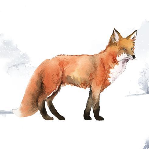 Handritad räv i snö akvarell stil