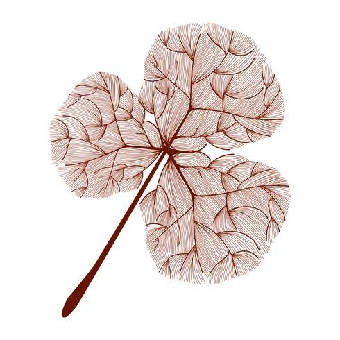 Ilustração, de, folha árvore