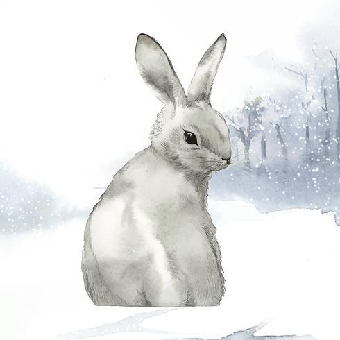Coelho cinzento selvagem em um país das maravilhas do inverno pintado pelo vetor de aquarela